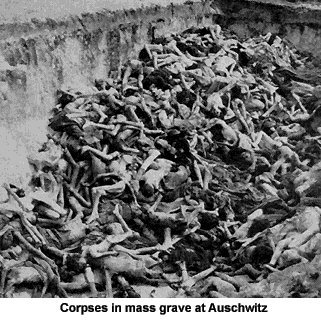 http://greatersurbiton.files.wordpress.com/2010/02/auschwitz.jpg